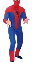Déguisement The Amazing Spider-Man adulte™