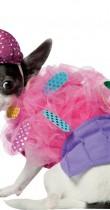 Déguisement pour chien de cupcake